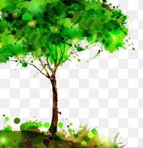 Tree - Tree Stock Illustration PNG