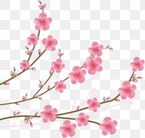 Cherry Blossom Watercolor - Cherry Blossom Clip Art PNG
