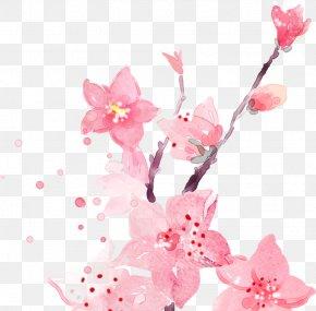 Flower - Desktop Wallpaper Floral Design Flower Watercolor Painting PNG