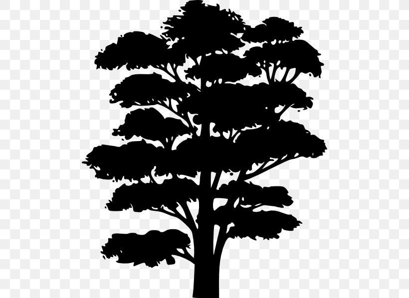 Tree Silhouette Drawing Clip Art Png 492x598px Tree Black And White Branch Cartoon Christmas Tree Download Download as svg vector, transparent png, eps or psd. tree silhouette drawing clip art png