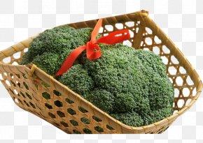 Broccoli - Broccoli Vegetable Vegetarian Cuisine PNG