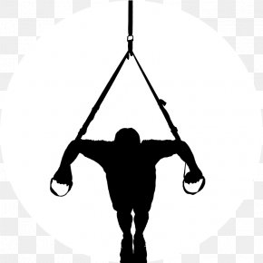 Suspension Training Personal Trainer Functional Training Exercise PNG