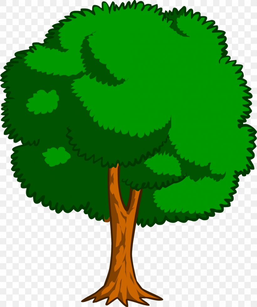 Drawing Trees Cartoon Clip Art Png 1009x1207px Tree Branch Cartoon Color Colored Pencil Download Free Download 85,810 cartoon tree free vectors. drawing trees cartoon clip art png