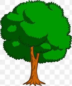 Cartoon Tree - Drawing Trees Cartoon Clip Art PNG