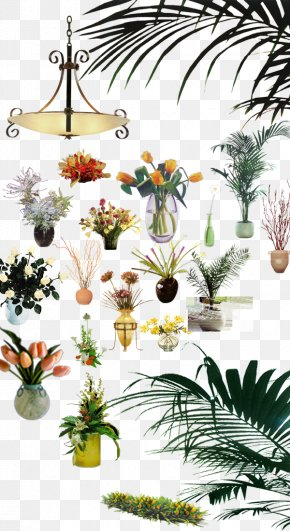 Vase Plant Interior Furnishings - Plant Designer Floral Design PNG