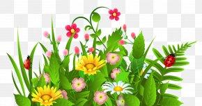Flower Garden Cliparts - Flower Free Content Clip Art PNG