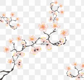 Cherry Tree Branches - Cherry Blossom Drawing Illustration PNG