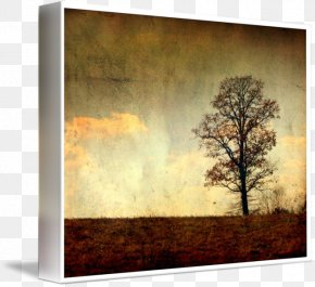 Painting - Painting Picture Frames Gallery Wrap Canvas Art PNG