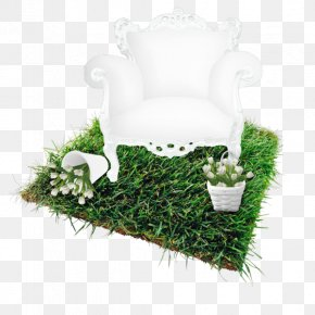 Turf Lawn Chair - Land Lot Square Meter Renting Dacha PNG