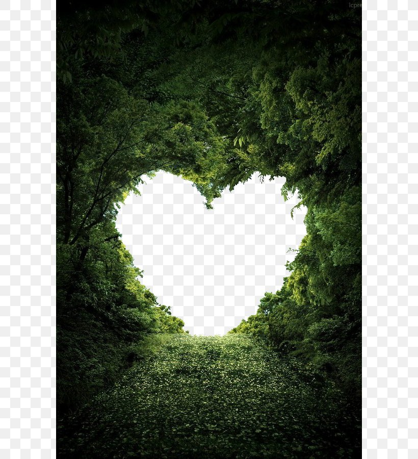 Heart Nature Valentine's Day Love Wallpaper, PNG, 600x900px, Nature, Cloud Tree, Color, Garden, Grass Download Free