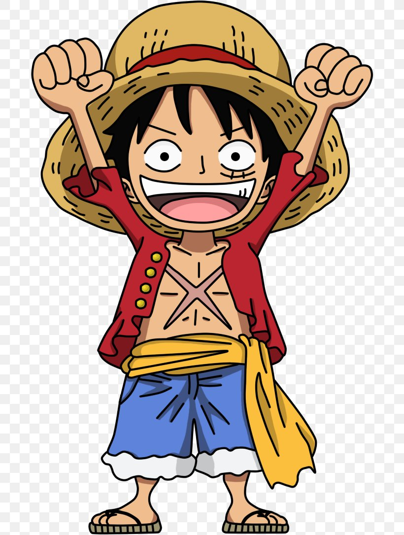 One Piece Pirate Warriors Monkey D Luffy Roronoa Zoro