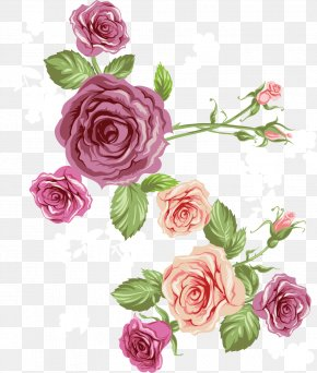 Vector Rose Pink Roses Sea - Beach Rose Euclidean Vector Flower PNG