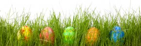 Beautiful Easter Eggs In Grass - Easter Bunny Red Easter Egg Egg Hunt PNG