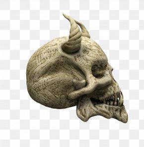 Skull - Skull U9ab7u9ac5 Skeleton Snout PNG