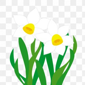 Spring Illustration - New Year Card Paper Floral Design Clip Art PNG