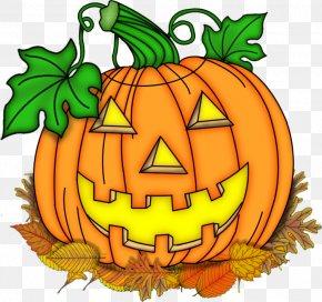 Jack O Lantern Fest - Jack-o'-lantern Pumpkin Halloween Squash Calabaza PNG