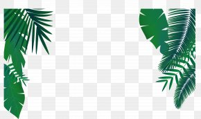 Green Palm Leaf Decoration Vector - Leaf Euclidean Vector Arecaceae PNG