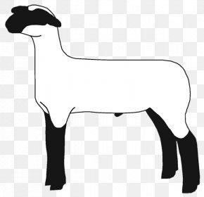 Sheep - Sheep Goat Cattle Clip Art Mammal PNG