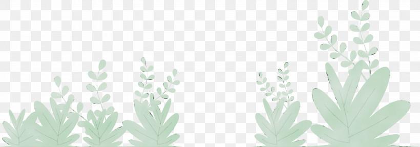 Grasses Black & White / M Plant Stem Line Art Leaf, PNG, 3000x1050px, Grass, Biology, Black White M, Flower, Grasses Download Free