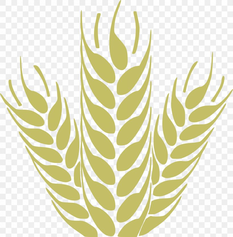 Wheat Flour Cereal Clip Art - Grain Transparent PNG