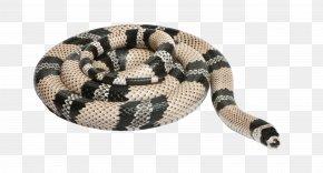 Entrenched Snake - Honduran Milk Snake Reptile Sinaloan Milk Snake Stock Photography PNG