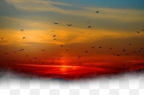 Sunset Under The Birds - Sunset Sky Cloud PNG