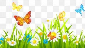 Flower - Clip Art Flower Garden Lawn Gardening PNG