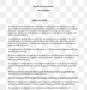 Power Of Attorney - Power Of Attorney Document Lawyer Form Template PNG