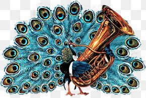 Peacock - Scott Gustafsons Animal Orchestra Alphabet Soup: A Feast Of Letters Amazon.com Christmas Treasury Favorite Nursery Rhymes From Mother Goose PNG
