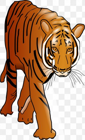 Yellow Tiger - Cat Bengal Tiger Felidae Clip Art PNG