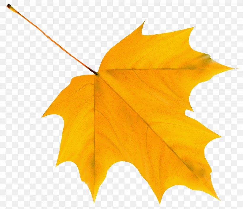Autumn Leaf Color Clip Art, PNG, 3977x3428px, Autumn Leaf Color, Autumn, Color, Green, Leaf Download Free