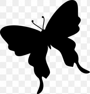 Butterfly - Butterfly Insect Silhouette Moth PNG