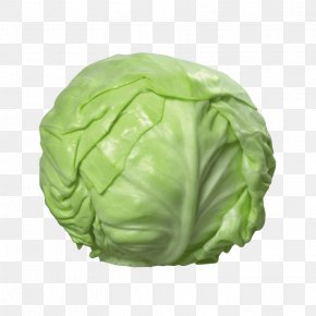 Cabbage - Napa Cabbage Cauliflower Vegetable PNG