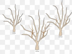 Pruning Trees - Tree Branch Woody Plant Apples Pruning PNG