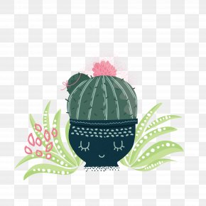 Living Room Potted Cactus - Cactaceae Euclidean Vector Plant PNG