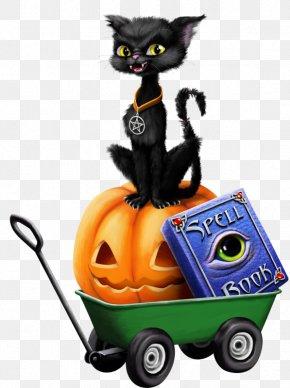 Halloween Pumpkin Black Cat - Halloween Cat Witch Clip Art PNG