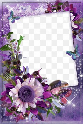 Mood Frame Pictures - Picture Frame Film Frame Photography Flower PNG