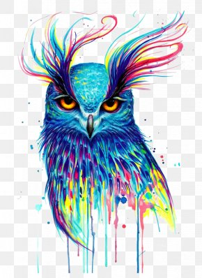 Owl - Owl Canvas Print Printing Painting PNG