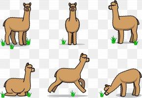 Stick Figure Alpaca PNG