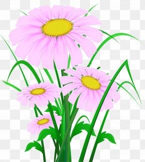 Clip Art - Wildflower Desktop Wallpaper Clip Art PNG