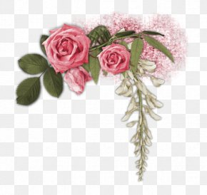 Kenar - Garden Roses Flower Party PNG