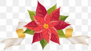 Poinsettia With Ribbon Clipart Image - Poinsettia Clip Art PNG