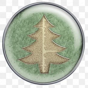 Plant Evergreen - Christmas Tree PNG