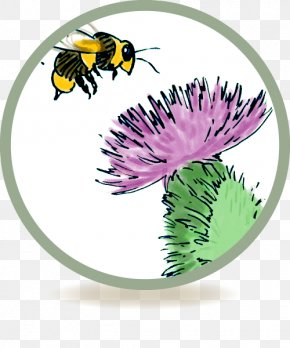 Bee - Honey Bee Cream Insect Bites And Stings Itch PNG
