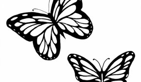 Butterflies Black And White Outline - Monarch Butterfly Outline Drawing Clip Art PNG