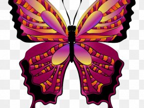Magenta Monarch Butterfly - Monarch Butterfly Drawing PNG