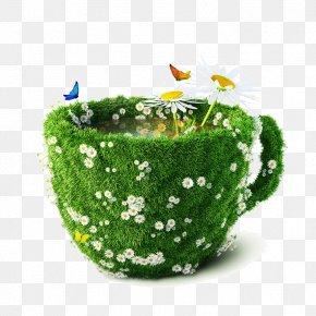 Creative Coffee Cup Flowers Landscape - Graphic Design Idea Creativity PNG