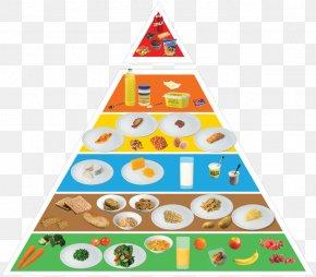 Food - Nutrient Food Pyramid Healthy Diet Eating PNG
