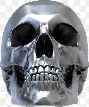 Silver Skull Vector - Human Skull Symbolism Silver Sticker Decal PNG