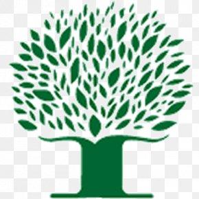 Perfect Childhood Summer Privilege - Rowntree Montessori Schools Peel District School Board Student Montessori Education PNG